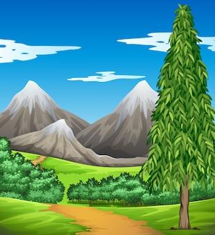 Cena com montanha e campo