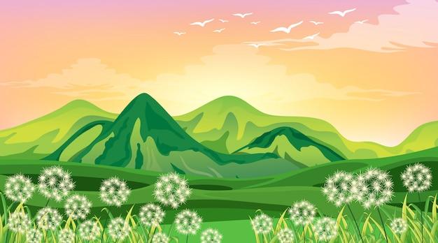 Cena com montanhas verdes e campo ao pôr do sol