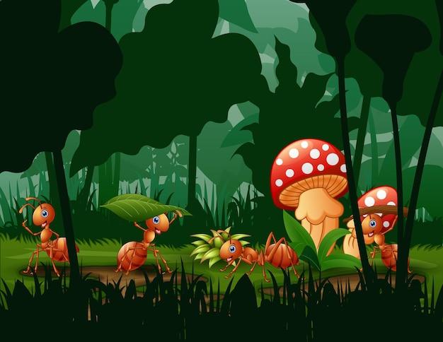 Cena com plantas e formigas na ilustração do jardim