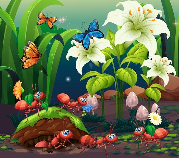 Cena com plantas e insetos no jardim