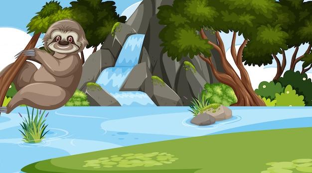 Cena com preguiça bonitinha na árvore perto da cachoeira