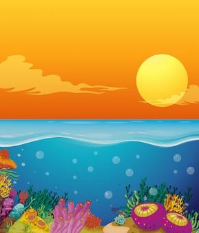 Cena, com, recife coral, sob, a, oceânicos