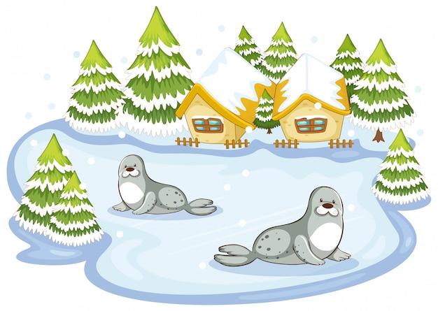 Cena com selos na ilustração de inverno