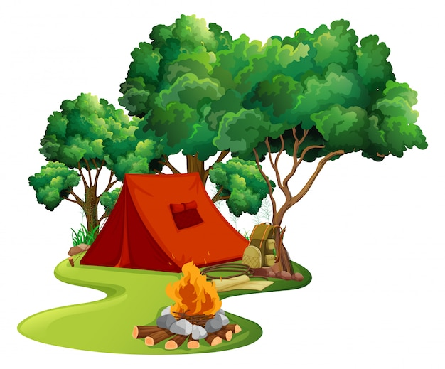 Cena com tenda vermelha na floresta