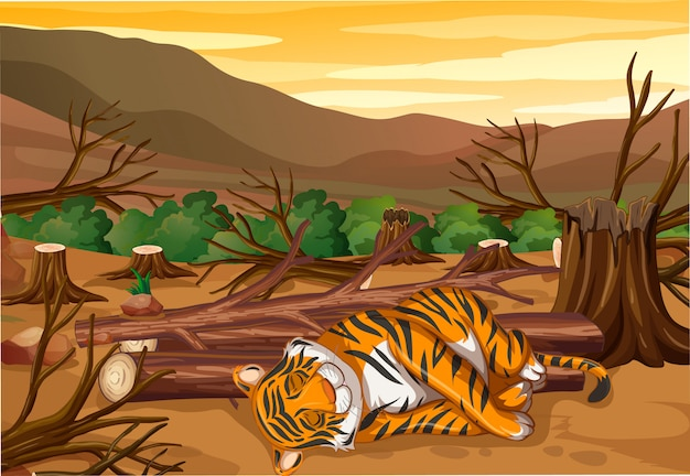 Cena com tigre e desmatamento