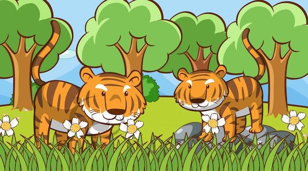 Cena com tigres fofos na floresta