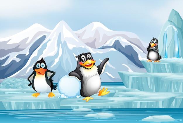 Cena com três pinguins no gelo