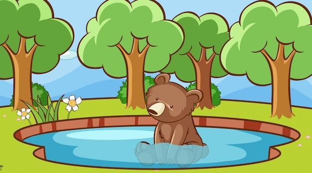 Cena com urso fofo na água