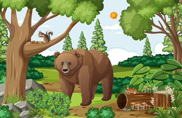 Cena com urso pardo na floresta durante o dia