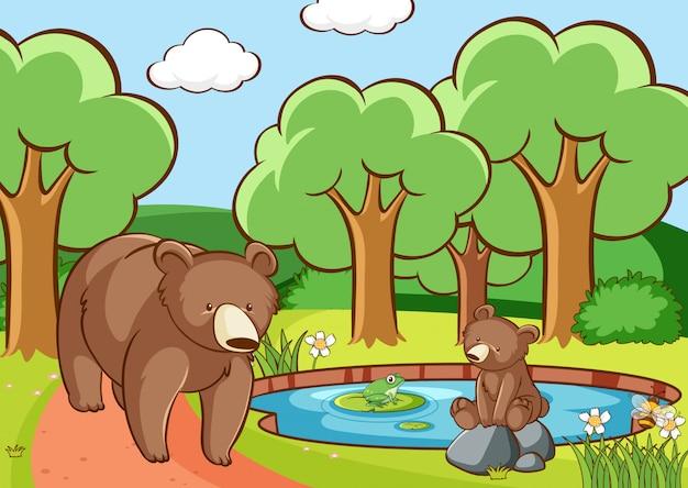 Cena com ursos na floresta