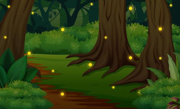 Cena da floresta à noite com ilustração de vaga-lumes