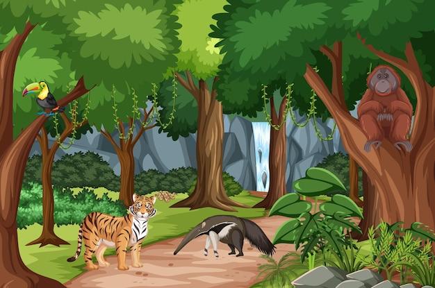 Cena da floresta com diferentes animais selvagens