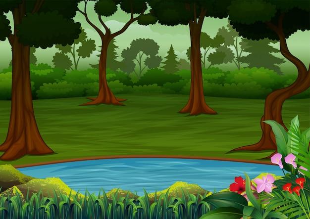 Cena da floresta escura com muitas árvores e pequeno lago