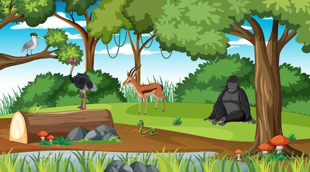 Cena da floresta tropical com diferentes animais selvagens