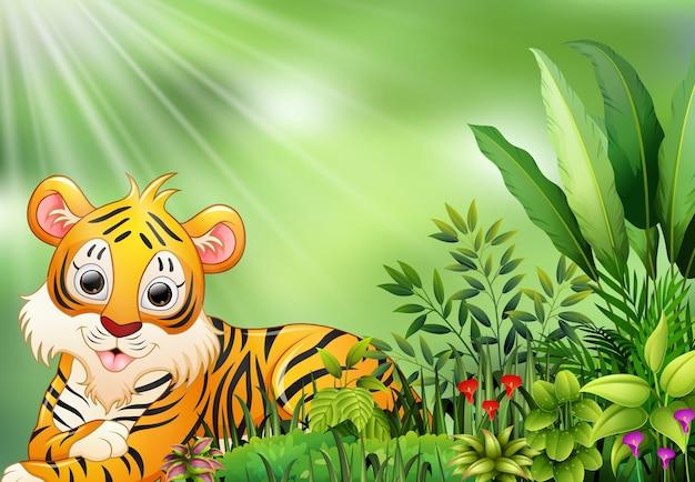Cena da natureza com desenhos animados do tigre