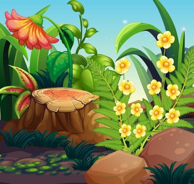 Cena da natureza com flores no jardim