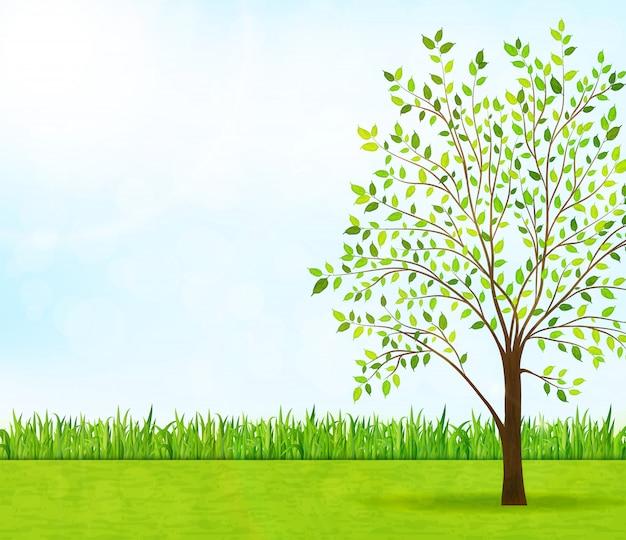 Cena da natureza com grama verde e árvore