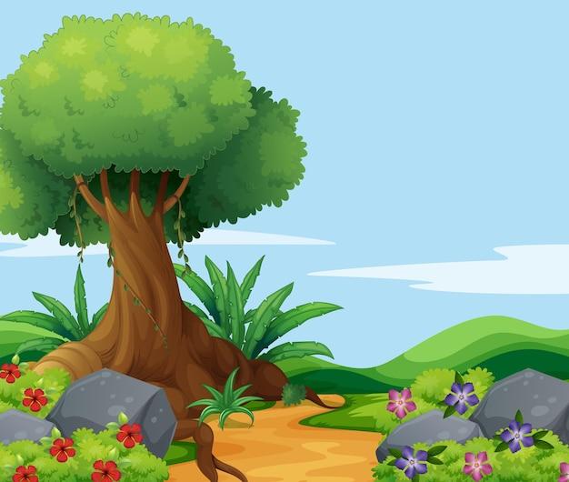Cena da natureza com grande árvore ao longo da trilha
