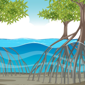 Cena da natureza com manguezais na água