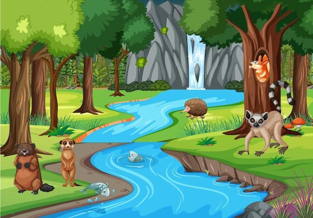 Cena da natureza com riacho fluindo pela floresta com animais selvagens