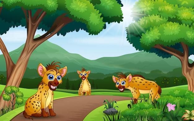 Cena da natureza com três hienas na floresta