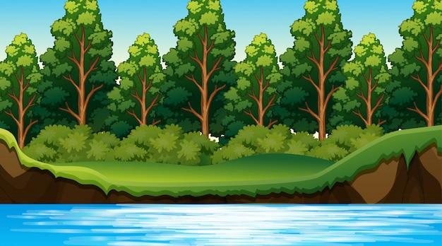 Cena da selva com o rio