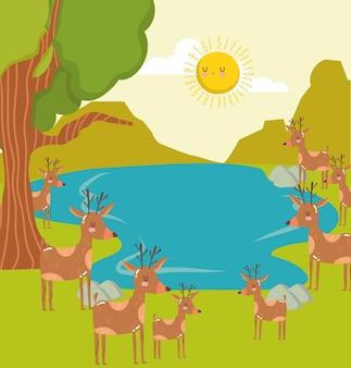 Cena de árvores veados de animais em lagoa