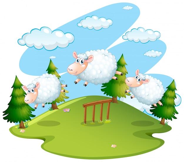 Cena de campo com ovelhas pulando