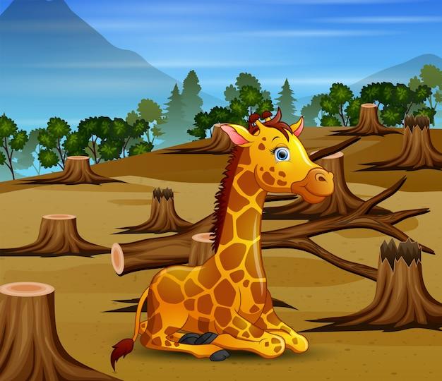 Cena de controle de poluição com girafa e seca