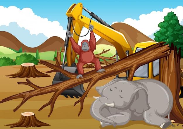 Cena de desmatamento com animais morrendo