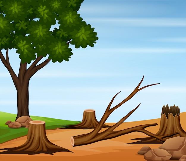 Cena de desmatamento com árvores derrubadas na natureza
