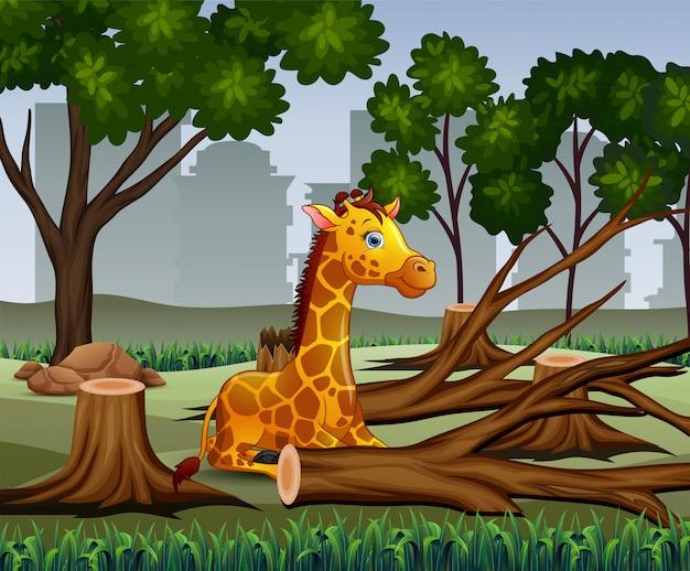 Cena de desmatamento com girafa na ilustração de seca