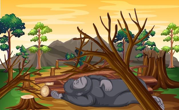 Cena de desmatamento com macaco morrendo