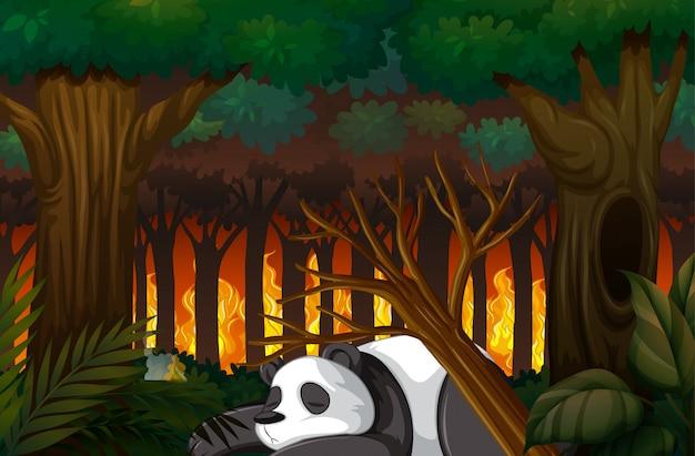 Cena de desmatamento com panda morrendo na floresta