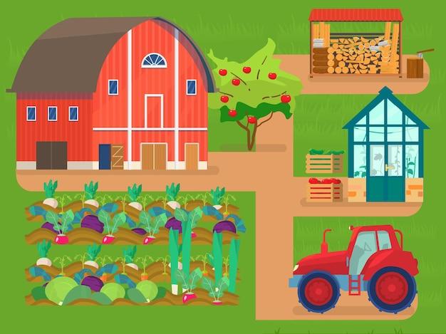 Cena de fazenda. celeiro vermelho, canteiros de vegetais, trator, casa de vidro com plantas, pilha de lenha, lenha, macieira, caixas com vegetais.