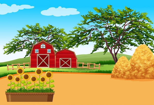 Cena de fazenda com celeiro e flores na fazenda