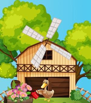 Cena de fazenda na natureza com celeiro e pato regando flores