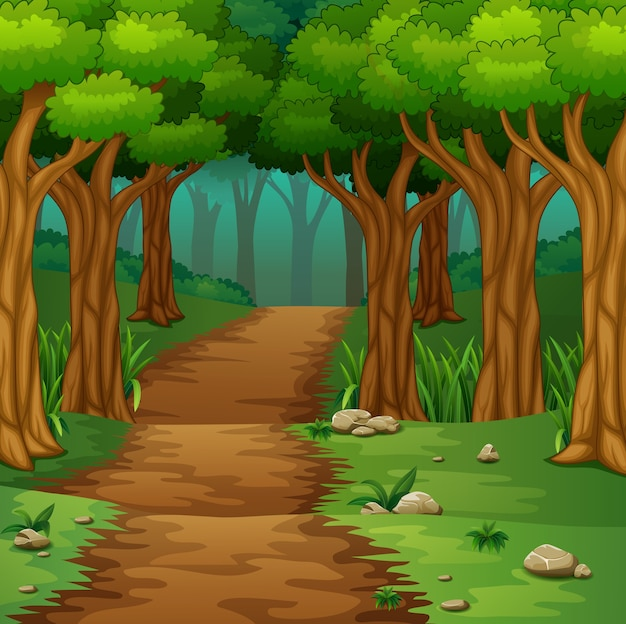 Cena de floresta com estrada de terra
