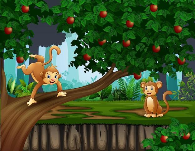 Cena de floresta com macacos em ilustração de macieira