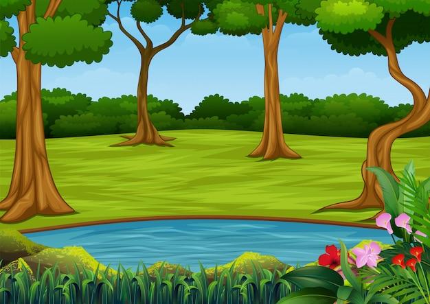 Cena de floresta com muitas árvores e pequeno lago