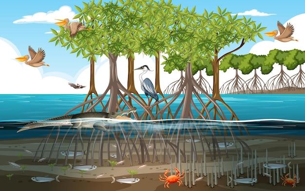 Cena de floresta de mangue durante o dia com animais na água