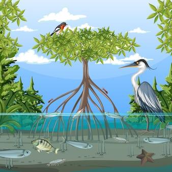 Cena de floresta de mangue durante o dia com animais