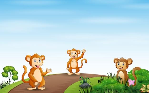 Cena de fundo com três macacos na estrada