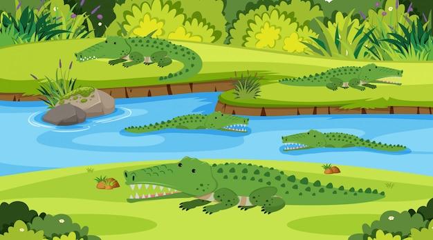 Cena de ilustração com crocodilos no rio