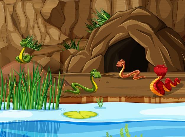 Cena de lago e caverna com cobras