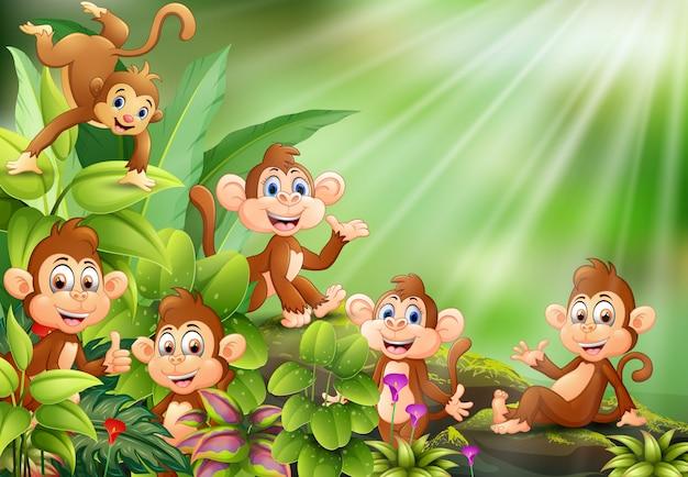 Cena de natureza com um grupo de desenhos animados de macaco