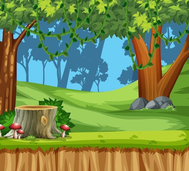 Cena de paisagem de madeira