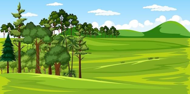 Cena de paisagem natural de um prado verde em branco