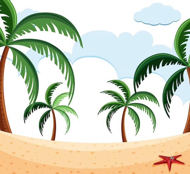Cena de praia com palmeiras