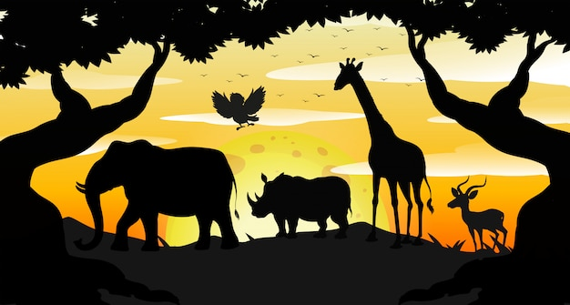 Cena de safari silhueta ao amanhecer